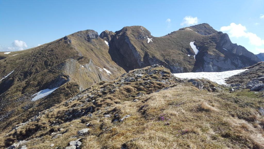 Blick zum Gipfel der Hochiss