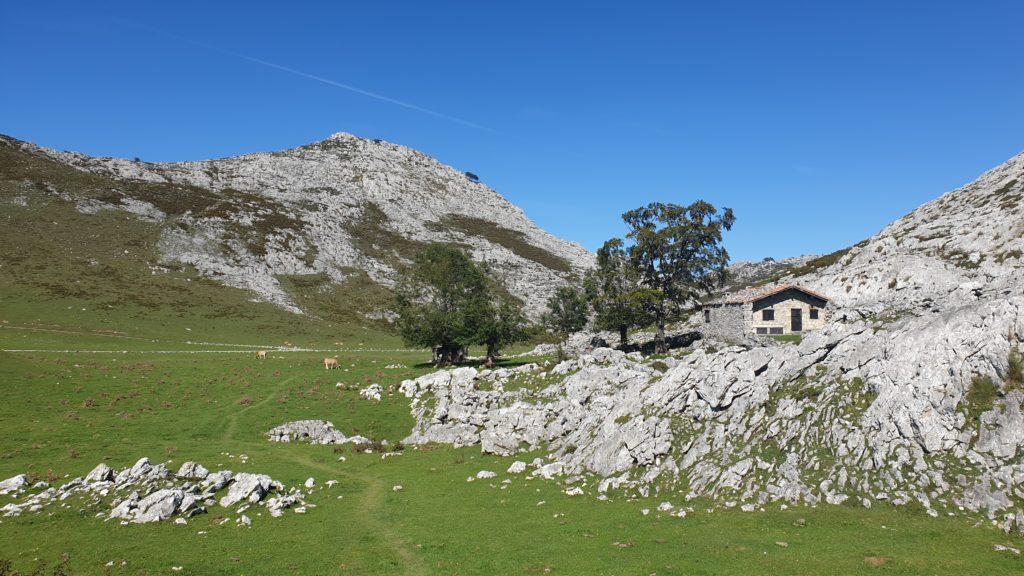 Landschaft Picos