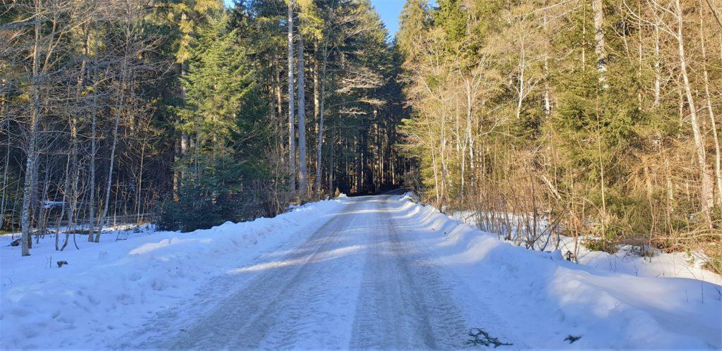 Schneebedeckter Wanderweg