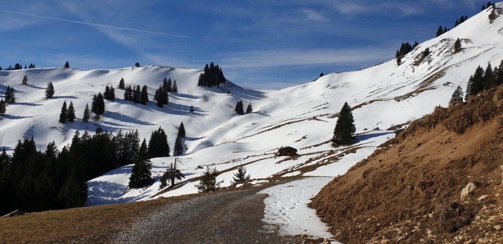Winterliches Bergpanorama