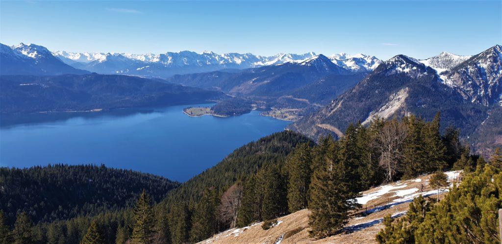 Blick vom Gipfel des Jochbergs auf den Walchensee